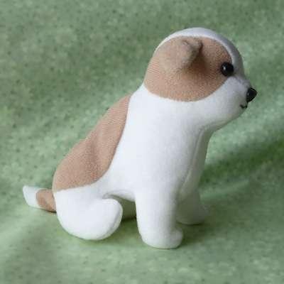 白お茶の子犬